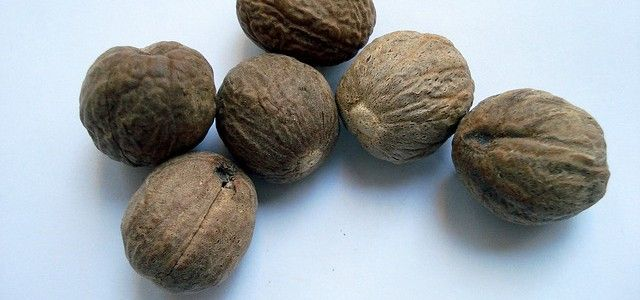 Nutmeg_Health