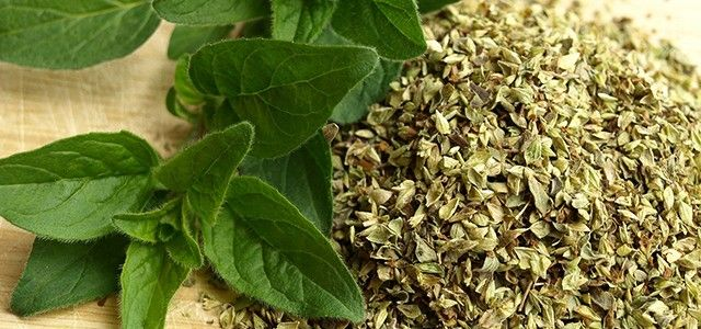 Oregano_Health