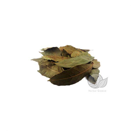 bay-leaves-laurel-min