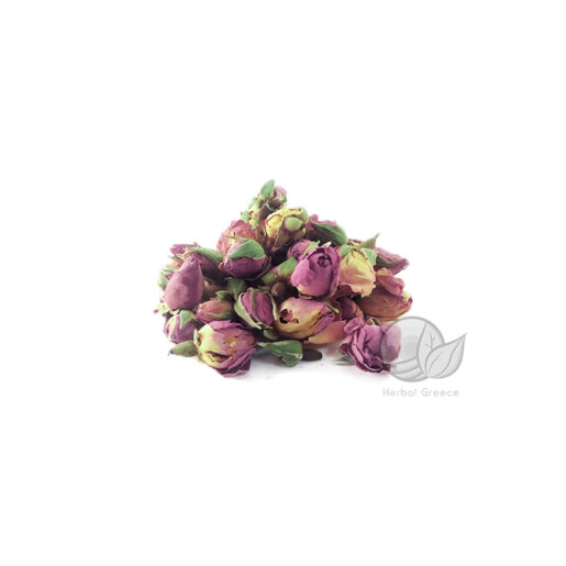 rose-buds-min